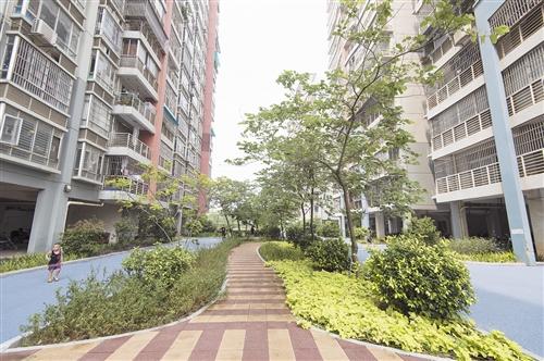 南寧:彩色混凝土吸水實用又環保