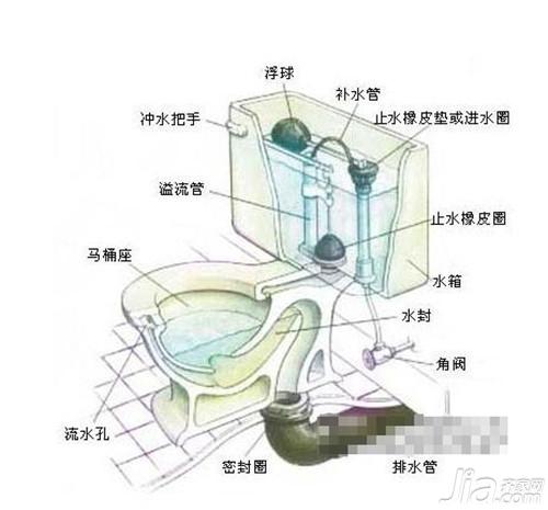 馬桶的結構圖 馬桶堵塞原因分析