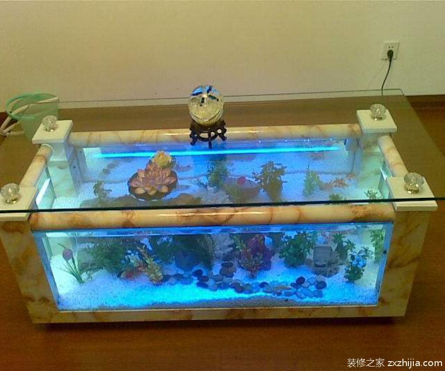 生態魚缸價格是多少?生態魚缸介紹